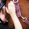Giddy-up: A Therapy for Autism