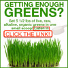 Get 5.5 Lbs of live, raw, alkaline, organic greens in one small scoop with Gene Hodges