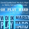 David Guetta vs. Sidney Samson - Go Play Hard (Walter Ego Mash Up) **FREE DOWNLOAD**
