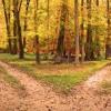 The Road Not Taken by Robert Frost read by Brady Oates