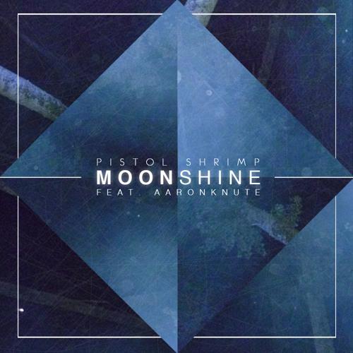 Pistol Shrimp (feat. AaronKnute) - Moonshine - Lost Years Remix