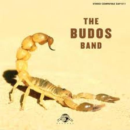 Budos Hand