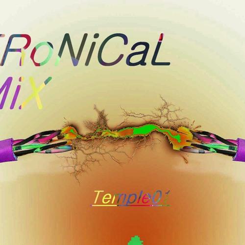 The Tronikal Mix