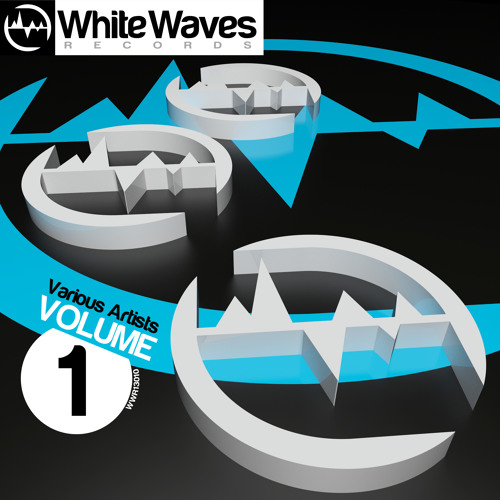 [WWR13010] VARIOUS ARTISTS Volume 1 // OUT 24.05.2013