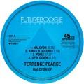 Terrence Pearce Kings N Queens Artwork