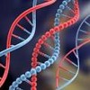 Frecuencia 528 Hz MI para la transformacion y reparación del ADN