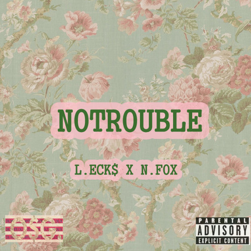 """No Troubles"" Prod. By Nate Fox."
