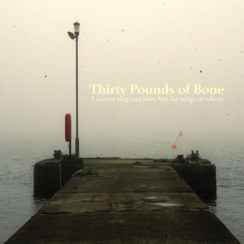 THIRTY POUNDS OF BONE - The Truth of the Matter