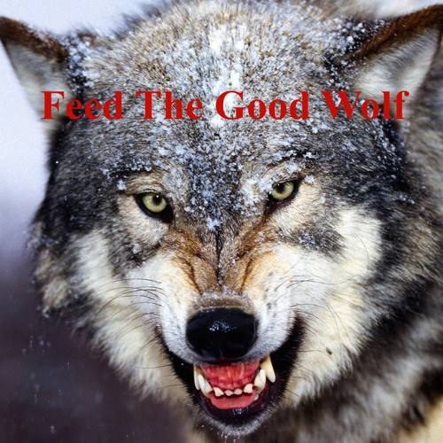 Feed The Good Wolf (Original Mix)