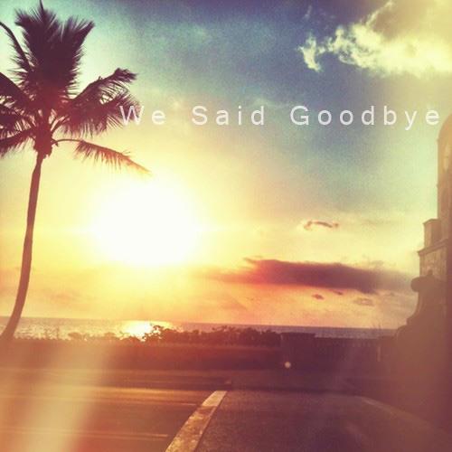 REDDY SAMPLE - We Said Goodbye