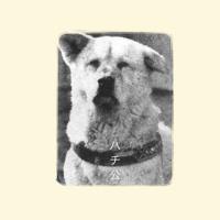 Hachiko (The Faithful Dog)