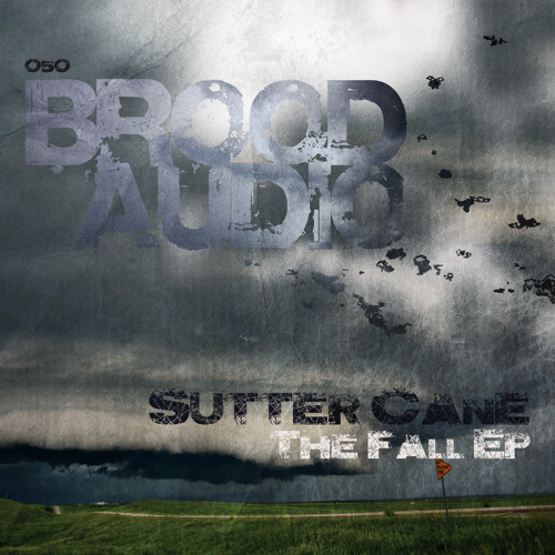 TEASER: BA050 - Sutter Cane - Skyfall (Original Mix) [Brood Audio]