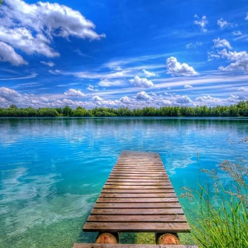 Murmuration - Ken Turner - nuhHey Lake