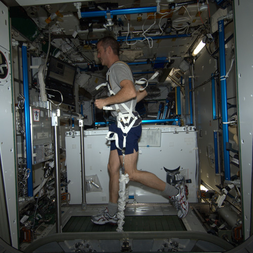 The COLBERT Treadmill