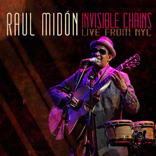 Raul Midón - Sunshine  I Can Fly  (Live)