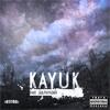 17. Kayuk (80100) - Година за годиною(при уч. 9Val)