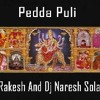 Pedda Puli - Dj Rakesh And Dj Naresh Solapur