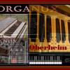 Syntheway Organux VST Oberheim OB3 Organ mode ( VSTi Plugin Virtual Instrument) Windows Mac OS X