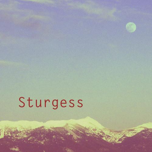 Sturgess (Single) [Explicit]