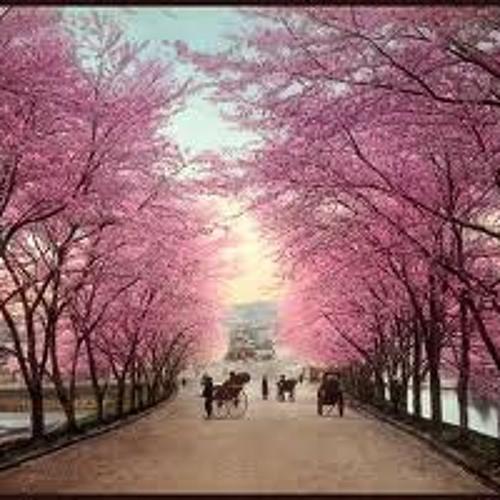 Welldone - Tokio spring (premaster version)