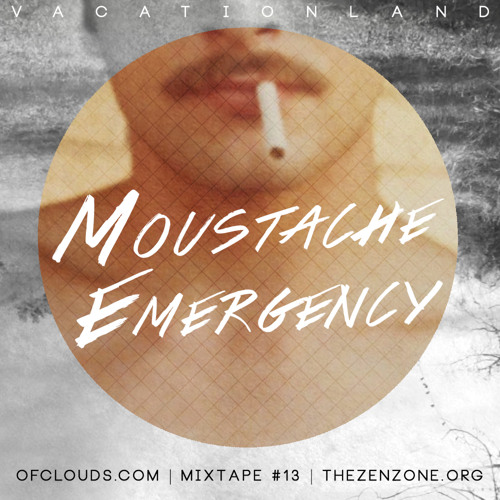 VACATIONLAND #13 Moustache Emergency