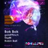 Robin Ball @ Rhythm Factory London 26-04-13