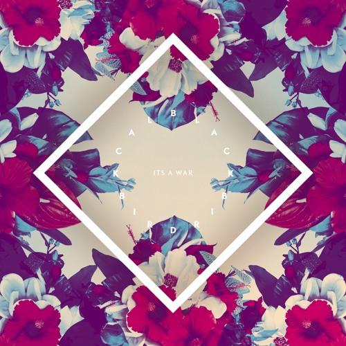 Blackbird Blackbird - Pure (Peekaboo remix)