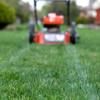 Easy Recipe for Lawn Success