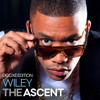 Wiley feat Angel & Tinchy Stryder - Lights On Remix Instrumental