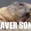 Beaver Song