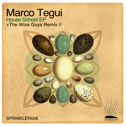 Marco Tegui - Run Away (The Wize Guys Remix) [Sprinkler] [SAMPLE] // Out Now!!!!