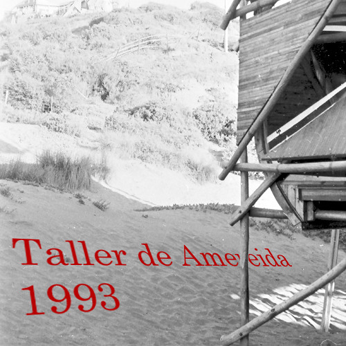 1993 / Taller de Amereida / Clases y Asignaturas / Actividades