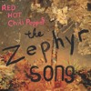 Zephyr Song - Red Hot Chili Peppers Cover