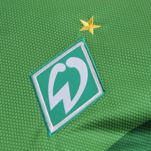 Werder unabsteigbar !