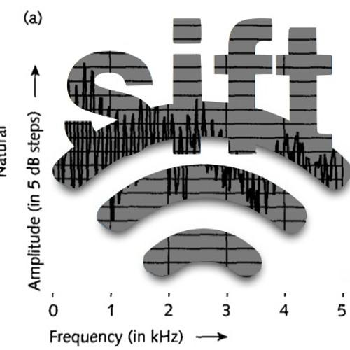 Translate Sound to the Brain