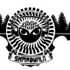 Logisticalone - Shambhala 2013 iBroStep Exclusive Promo Mix [Free Download in Description]
