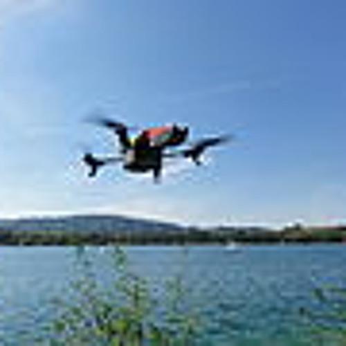 Drones Don't Dream