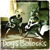 DOGS BOLLOCKS -  Scared Of The Dogs