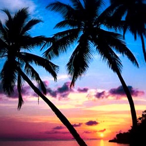 Lets Get Tropical