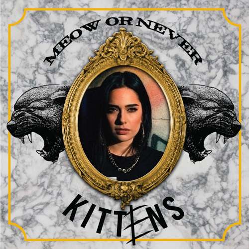 KITTENS x Meow or Never x HW&W Records