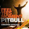 Pitbull & Christina Aguilera - Feel this moment (Sidney Samson & Gwise Remix)