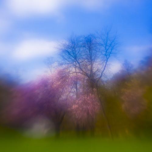 Download Free Track - Oliver Lieb - Springtime
