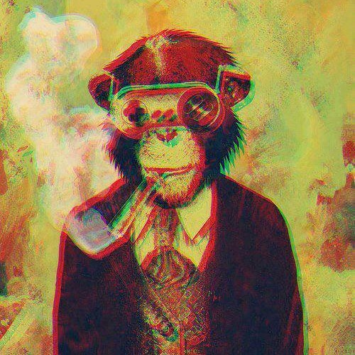 Indie Rock / Eletronic / Folk