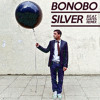 Bonobo - Silver (Beat Gates Remix) [Free Download]