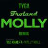 Tyga - Molly (Froland Remix)