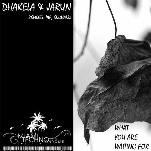 Dhakela & Jarun - What You're Waiting For _ Mastered version released on Beatport