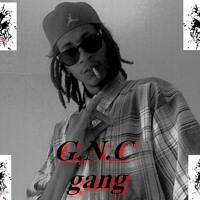 DJ GANGSTA NIGGA   M.L.K feat waka flocka - son psyco (GNC gang trapremix) - YouTube2