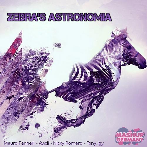 Mashup-Germany - Zebra's AsTRonoMia (Radio Edit)