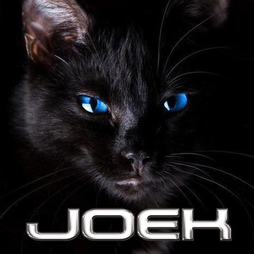 [PROMO] Martin Garrix & Blasterjaxx - Animals In Miami (Joek Fuckin' Jump Bootleg)