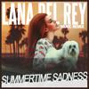 Lana Del Rey - Summertime Sadness (Vanic Remix)